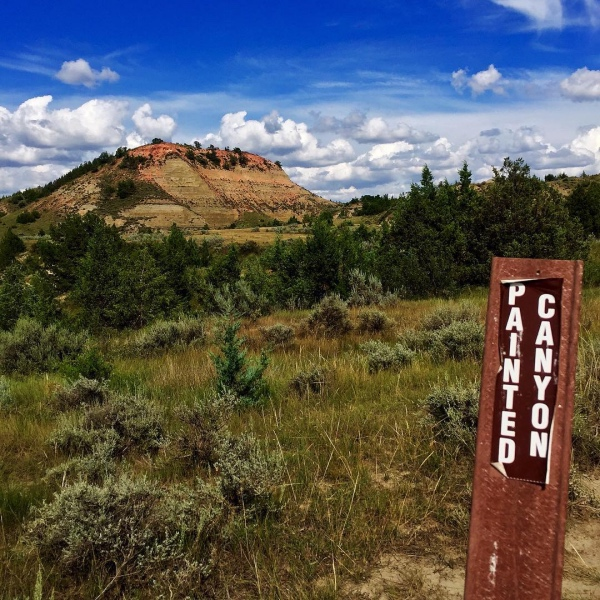 4 - Theodore Roosevelt National Park / North Dakota